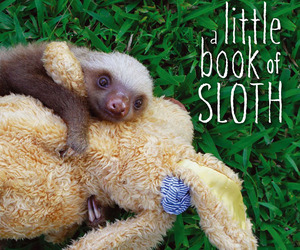 a-little-book-of-sloth